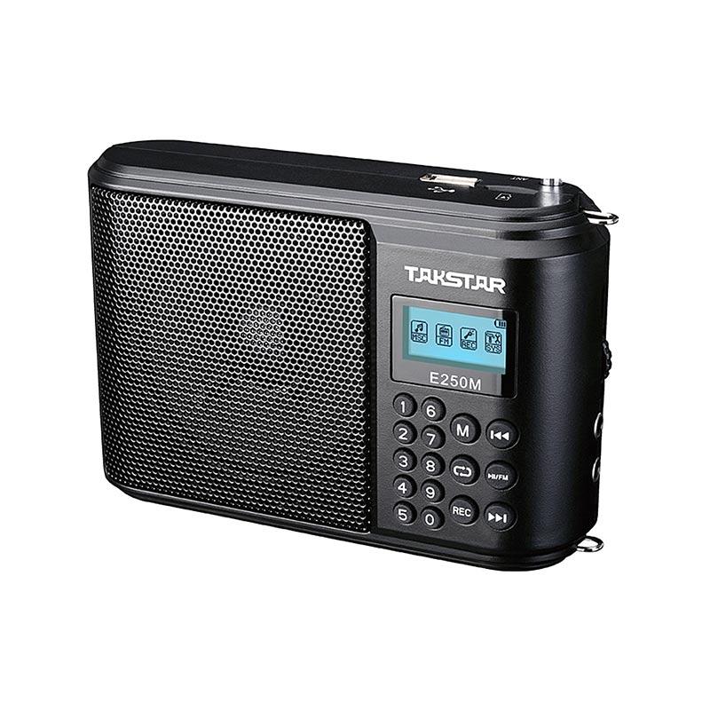 E250M Wired Portable Amplifier