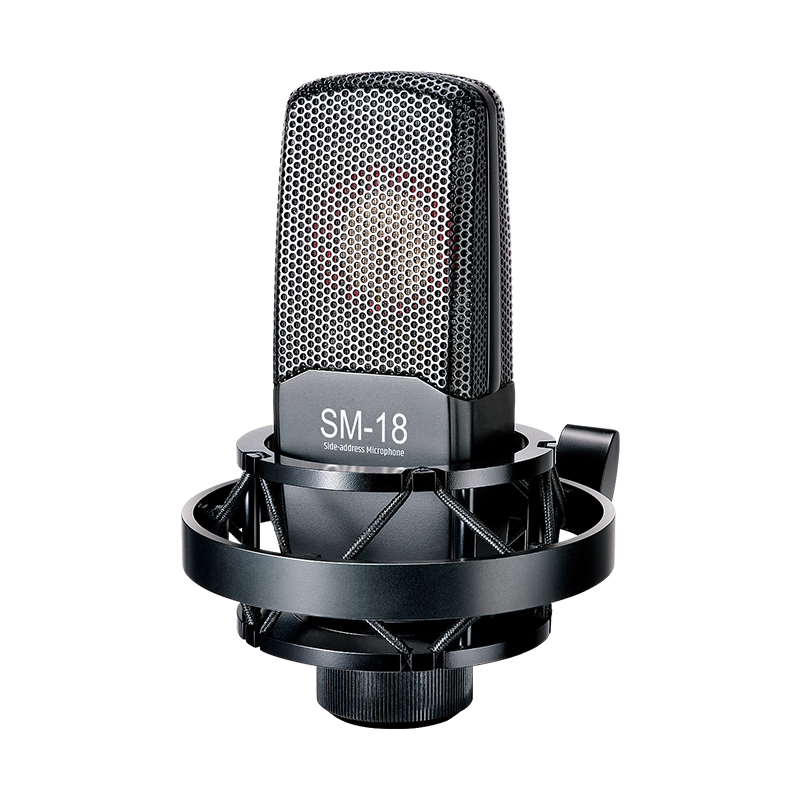 TAKSTAR Recording microphone condenser microphone with H-200 shock-absorbing stand and windproof sponge For recording vocals streaming media broadcasts and YouTube videos SM-8B dubbing